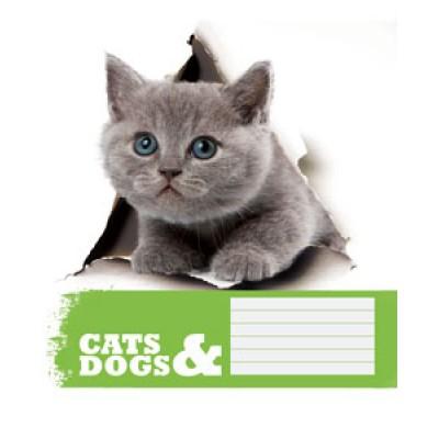 Тетрадь 24 листа в линию (1902л) Коты и собаки