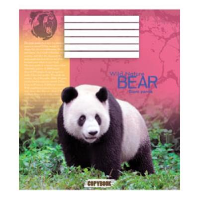 Тетрадь 24 листа в линию (2884л) Медведи