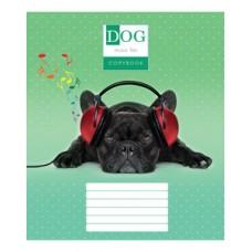 Тетрадь 24 листа в клеточку (3033к) Собаки в наушниках
