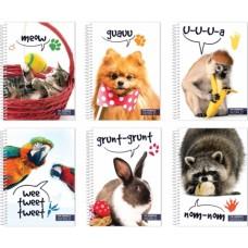 Блокнот «В мире животных» А5, обложка – полноцветная, пластик, 80 л., Ассорти Economix