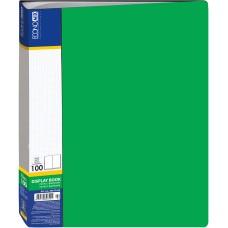 Папка А4 с 100 файлами Economix, зеленая