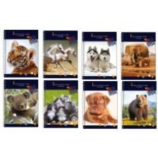 Блокнот В мире животных А5, 48 листов, Economix обложка - пластик с полноцветной печатью, крепление блока - боковая спираль, ассорти