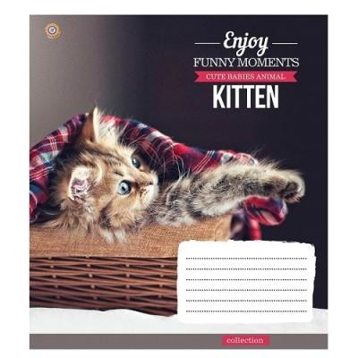 """Тетрадь ученическая в клетку, 12 листов, А5, """"Kittens Funny Moments"""""""